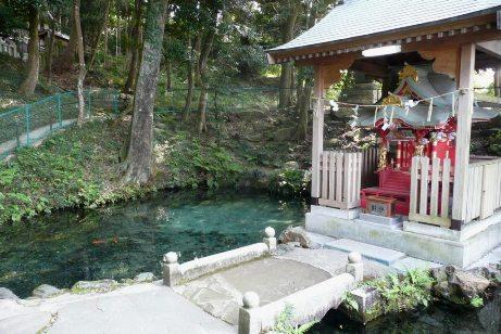 泉神社裏手の泉が森