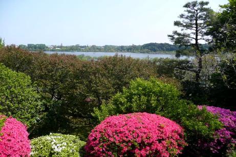 偕楽園からの千波湖
