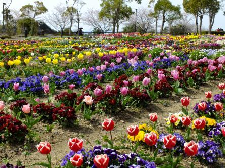 2012-04-02+(48)_convert_20120405222301.jpg