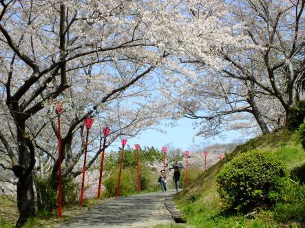 2012-04-05+(35)_convert_20120406153124.jpg