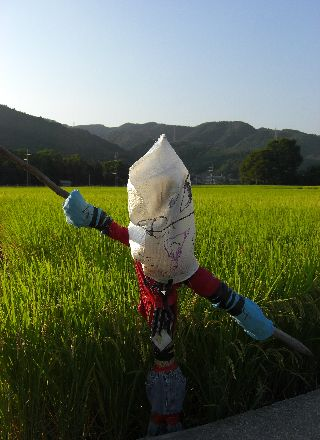 08kakashi07.jpg