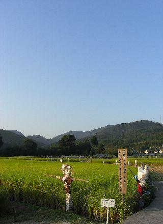 08kakashi13.jpg