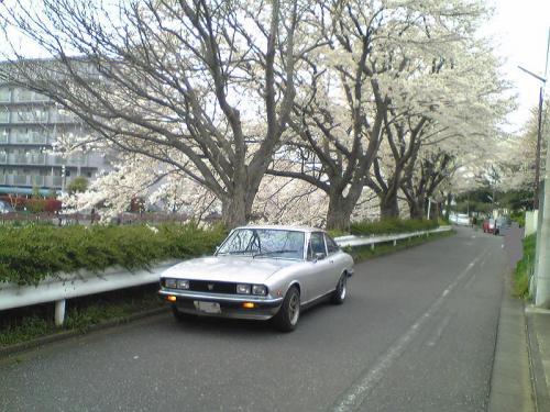 Image386.jpg