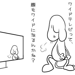 ワイドテレビ