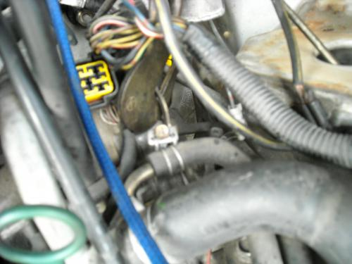 DSCN0042_convert_20090522201849.jpg