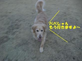 3月10日  散歩 044  ブログ