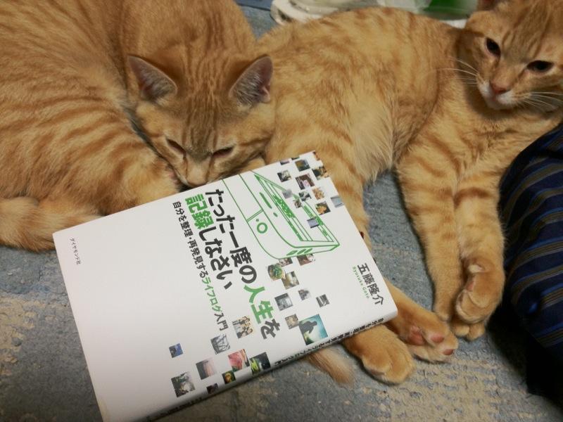 800-2012-04-07-AppleStoreNAGOYASAKAE-Goryugo-BOOK.jpg