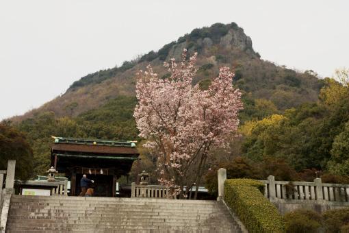 屋島神社'09.04.03-1