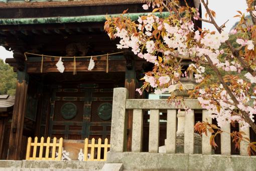 屋島神社'09.04.03-2