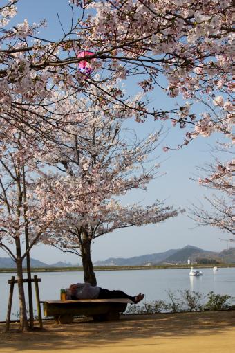 亀鶴公園'09.04.05-1