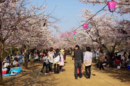 亀鶴公園'09.04.05-2