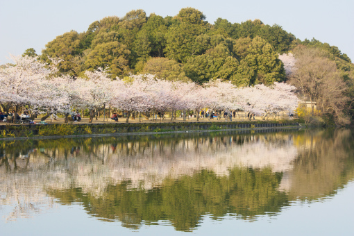 亀鶴公園'09.04.05-5