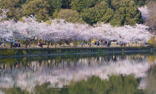 亀鶴公園'09.04.05-6