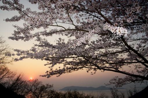 屋島'09.04.06