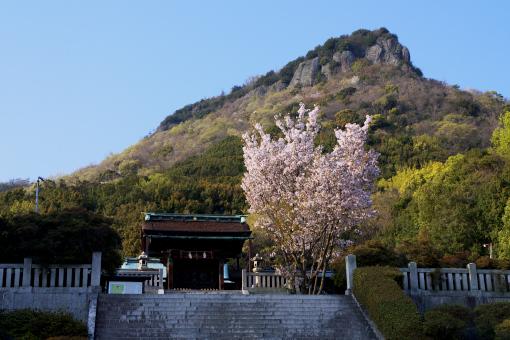 屋島神社'09.04.08