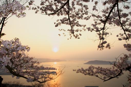 屋島'09.04.08-2