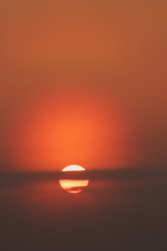 屋島'08.04.08-3