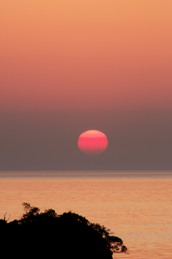 津田湾'09.04.10-2
