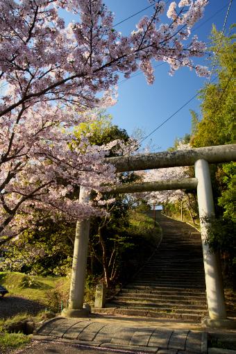 多和神社'09.04.10-2