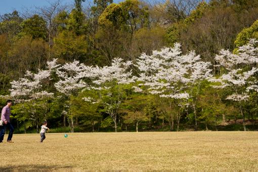 満濃森林公園'09.04.11-1