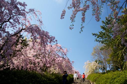 満濃森林公園'09.04.11-2