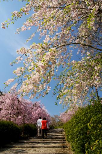 満濃森林公園'09.04.11-3