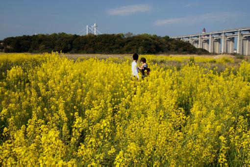 瀬戸大橋公園'09.04.12-1