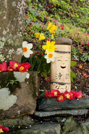 岩井畝の大桜'09.04.13-2