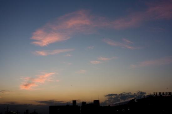 20080925-4.jpg