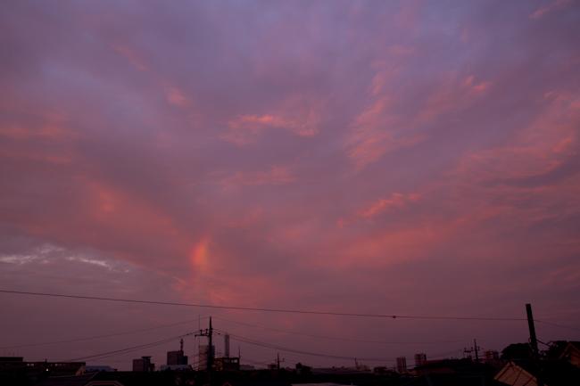 20090816-b.jpg