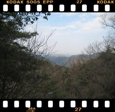 310-4.jpg