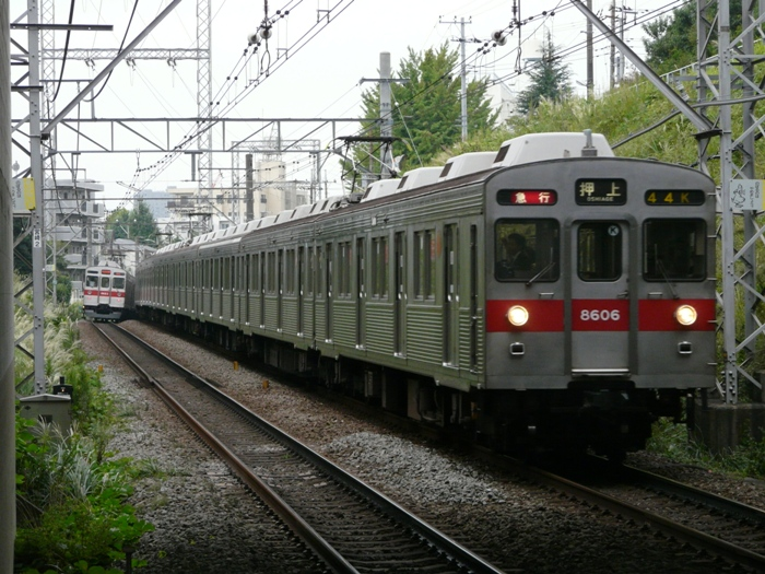 P1050131.jpg