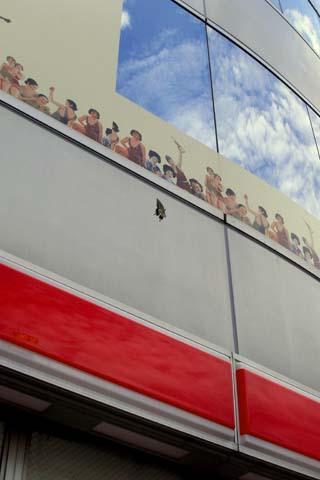 渋谷のアゲハチョウ