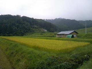 大江山の風景