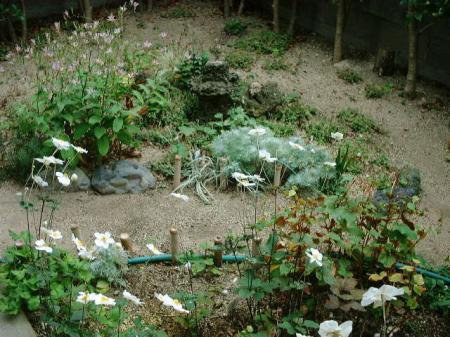 実家の裏庭
