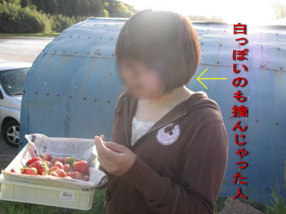 IMG_0678-h.jpg