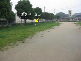 IMG_0491 (2)