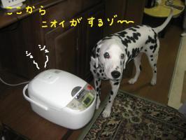 何の匂い?1