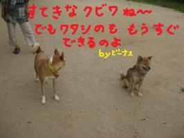 IMG_1459.jpg