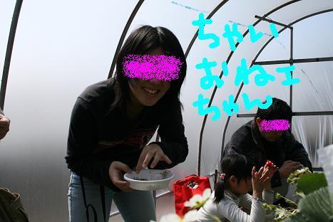 20080309123.jpg