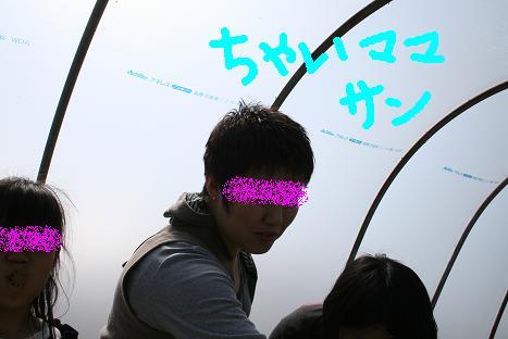 2008030913.jpg