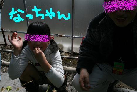 2008030916.jpg
