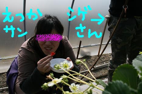 2008030920.jpg