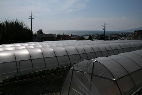 2008030926.jpg