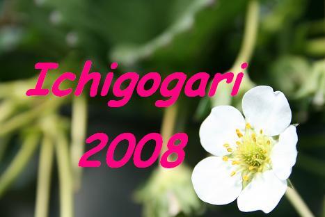 2008030931.jpg