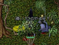 WS003876.JPG