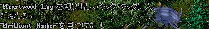 WS004505.JPG