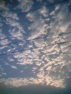 07-05-27_18-09.jpg