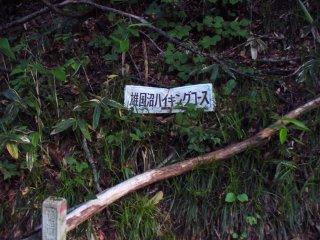 01_20080604102114.jpg