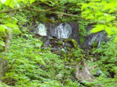 060721名もなき滝